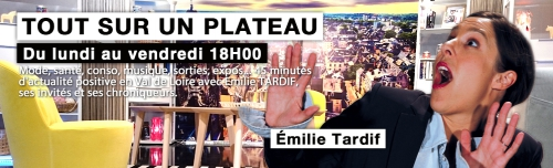 TV Tours, Emilie Tardif, interview, Polycarpe, polar, hannetons